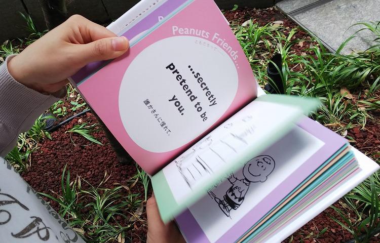 friendsbook-017
